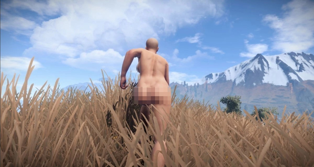 A naked gender ambiguous person running through grass near mountains.